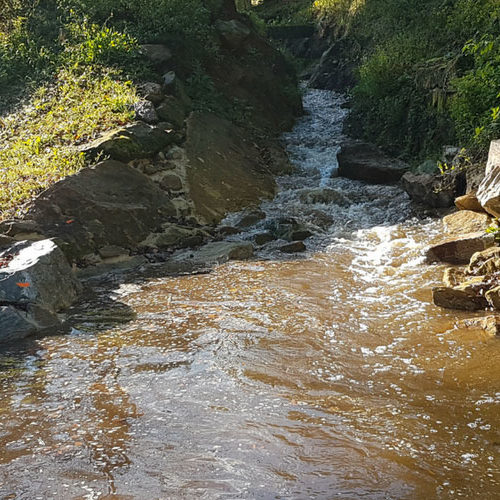 Renaturation-de-riviere-CHOGNOT